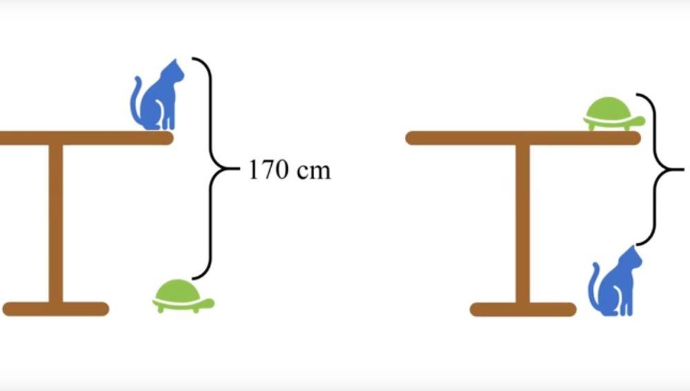 Cuánto Mide La Mesa Eres Capaz De Resolver Este Problema Matemático Para Niños De Primaria