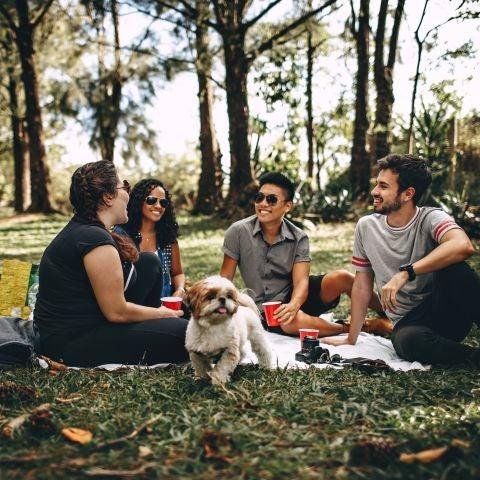 Un grupo de amigos en el parque