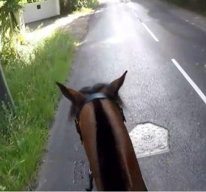 Sancionan con más de mil euros a un ciclista que adelantó a un caballo de manera temeraria