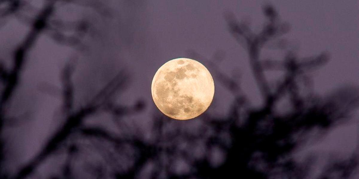 Superluna mayo 2020; Hora y cómo ver la Superluna de las flores hoy desde España