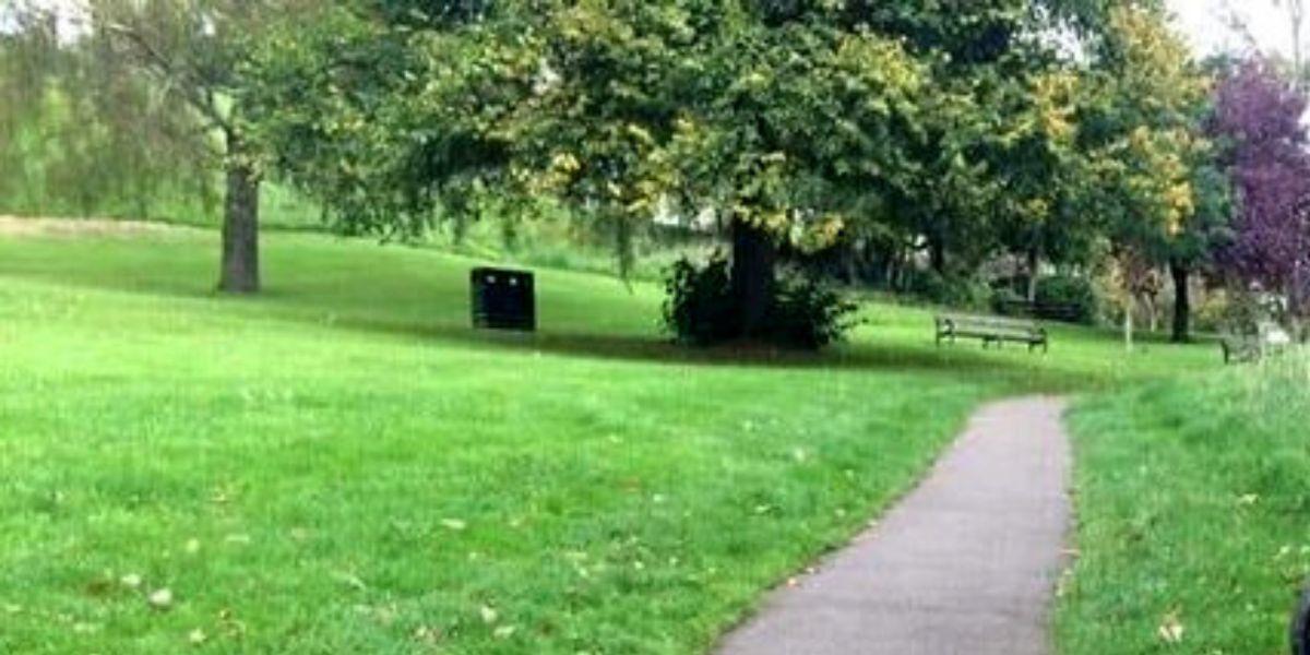 Perro escondido en una foto de un parque