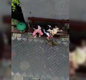 Imagen de un mono secuestrando a una niña en Indonesia
