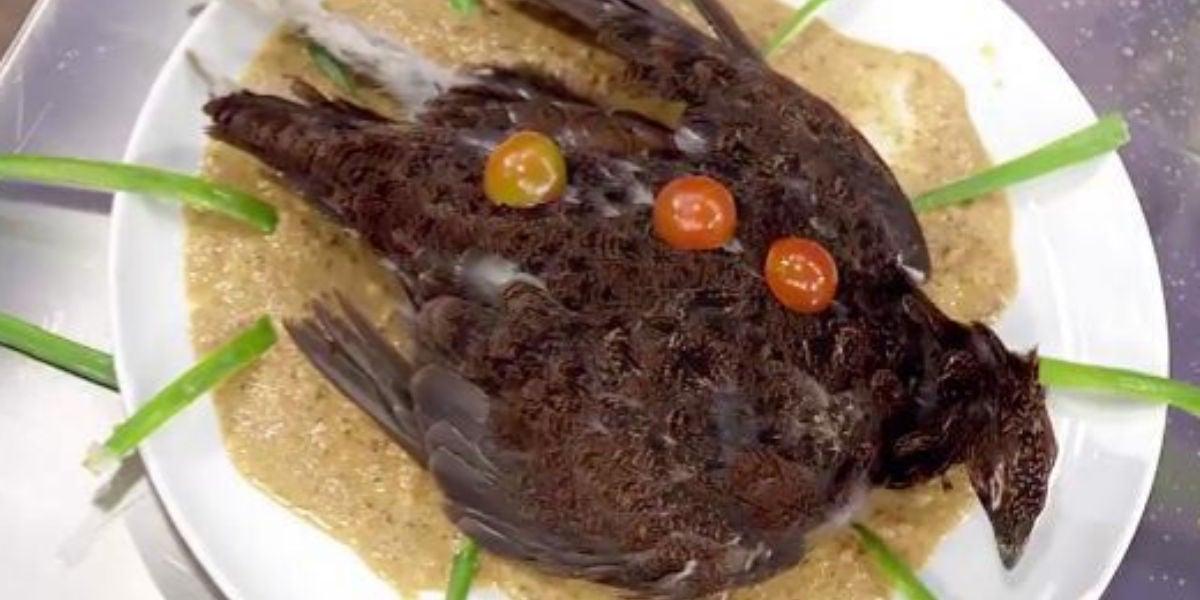'Pájaro muerto en lo alto de un plato', la polémica propuesta de Saray de Masterchef