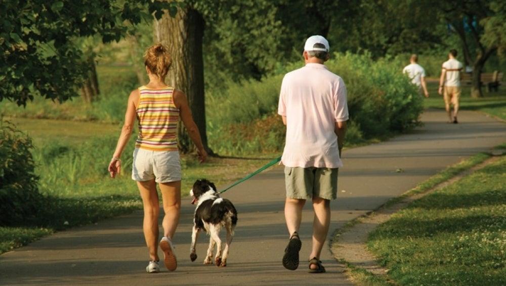 Caminar más de una hora al día reduce a la mitad el riego de padecer dolencias arteriales
