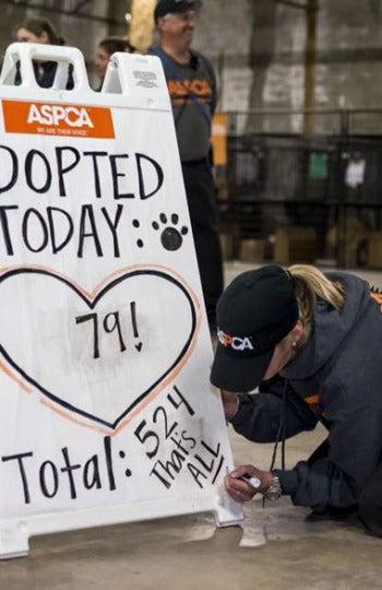Evento para adoptar animales en EEUU