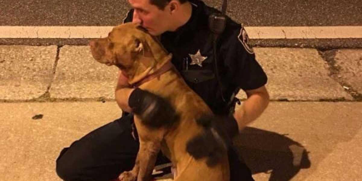El agente de Policía abrazando a uno de los pitbulls