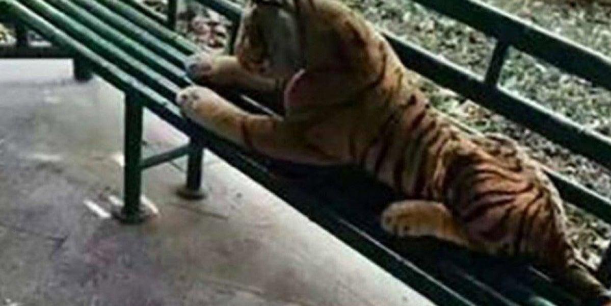 El tigre de peluche tumbado en un parque de China