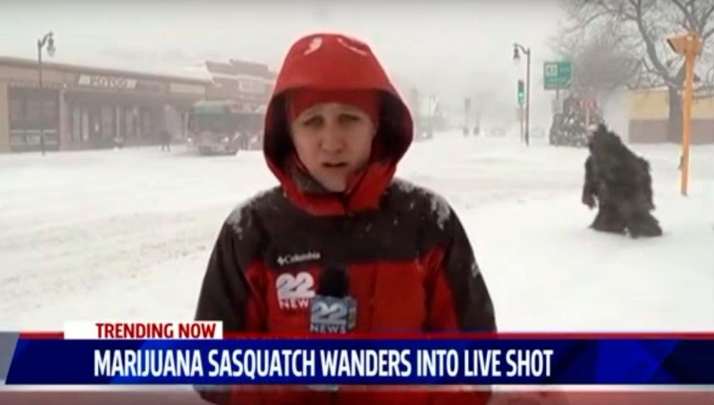 El hombre marihuana de las nieves