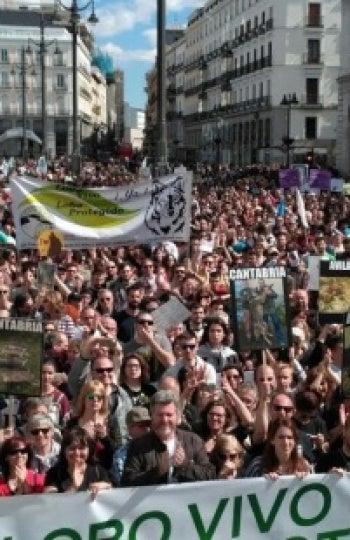 Miles de personas se manifiestan en Madrid para pedir la protección del lobo ibérico