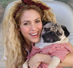Shakira con el famoso 'Doug the pug'