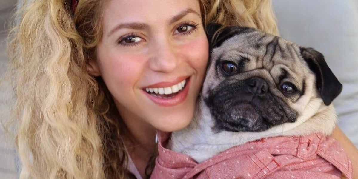 Shakira con el famoso 'Doug the pug'