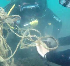 Buceadores voluntarios dedican sus horas libres a limpiar la basura del fondo marino