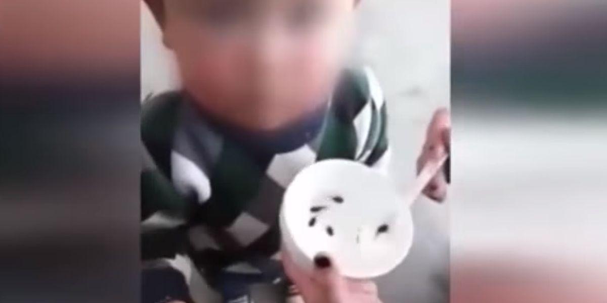 Una madre alimenta a su hijo con renacuajos vivos