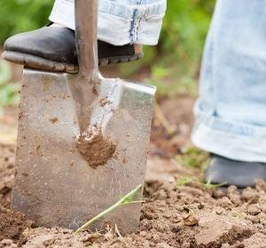 Imagen de archivo de un hombre trabajando en un huerto