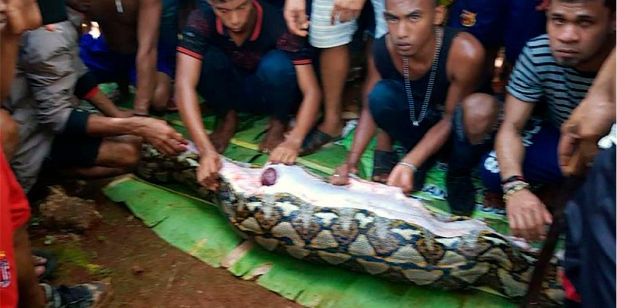 Vecinos junto con la pitón que tenía en su interior a la mujer indonesia