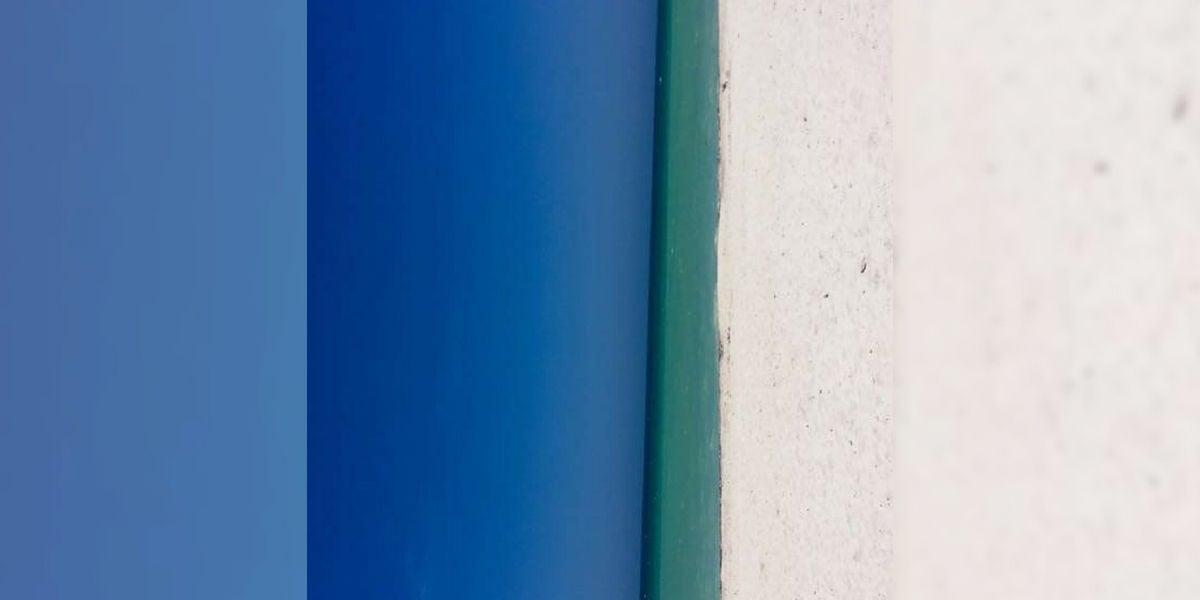 Puerta azul o playa, la ilusión óptica de Twitter