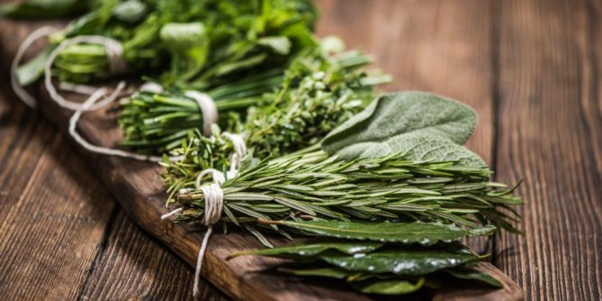 Cómo tener plantas aromáticas frescas y usarlas en la cocina