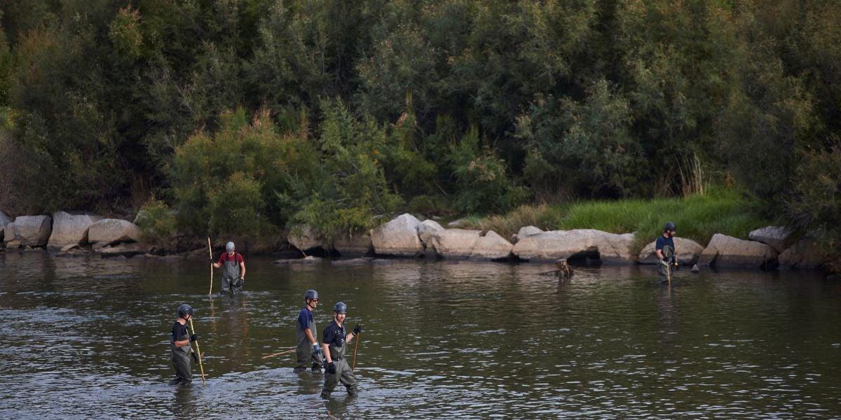 Agentes de los Mossos d'Escuadra y de los Bomberos buscan al bebé que fue lanzado al río Besòs