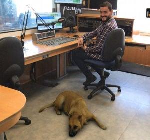 Filtro de perro Sasha Dog con Juanma Romero