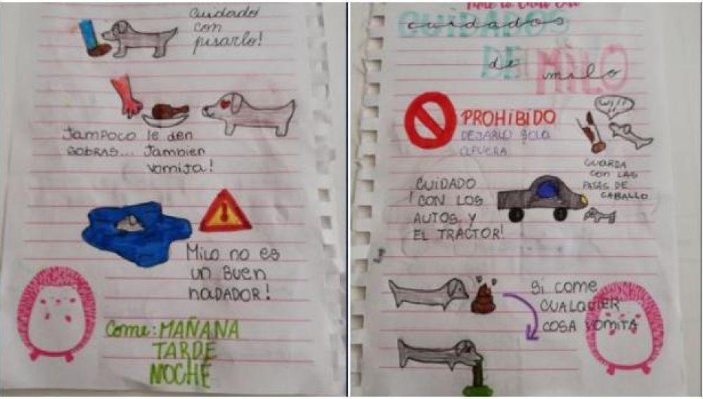 El divertido manual de instrucciones que una niña deja a su tía para que cuide de su perro en vacaciones