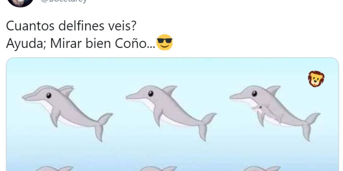Reto visual: ¿Cuántos delfines ves?
