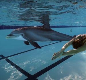 Edge Innovartion crea un delfín robot para sustituir al de los acuarios