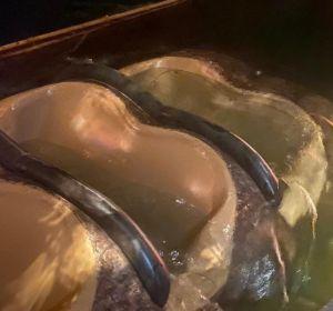 Atracción Splash Mountain de Disney World Orlando